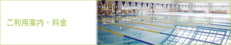 swim_info_top